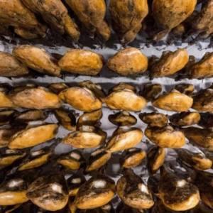 Los aranceles de EEUU sólo repercutirán en el jamón de Huelva